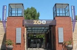 Melb Zoo