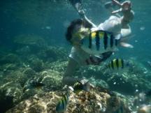 3. Snorkling, Sabang -Pulau Weh